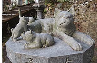 三宝寺子宝犬2