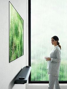 壁掛け有機ELテレビ